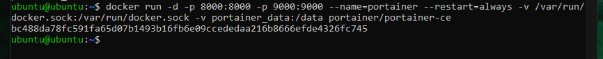 The output of running the Docker run command for Portainer