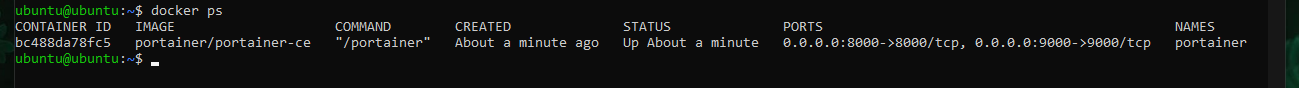 The output of running docker ps
